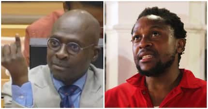 The People's Bae takes shots at Gigaba, but he fires back