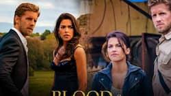 Blood and Treasure season 2: cast, plot summary, release date, Trailer
