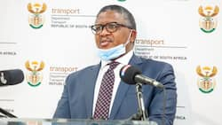 Minister of Transport Fikile Mbalula extends deadline to renew driving licences to March 2022