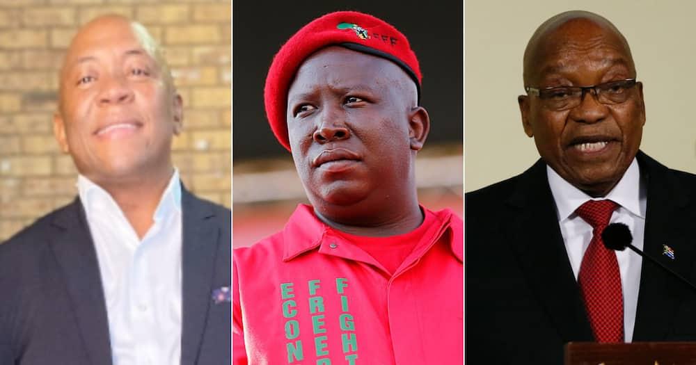 DJ Linda Sibiya, Julius Malema, Jacob Zuma, House Arrest, Open letter, Twitter reactions