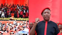 """""""Land and jobs"""": EFF launches people's manifesto ahead of local elections"""