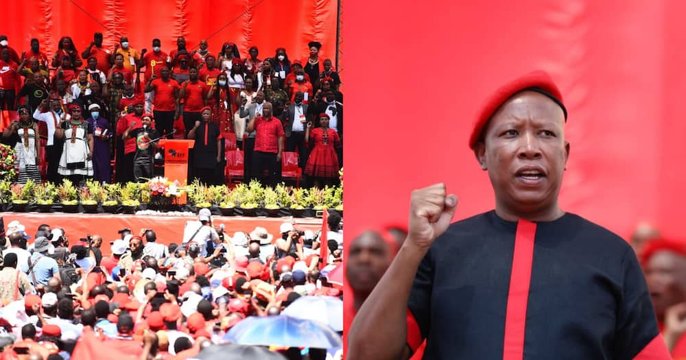 EFF, launches, people's manifesto, local elections, land and jobs