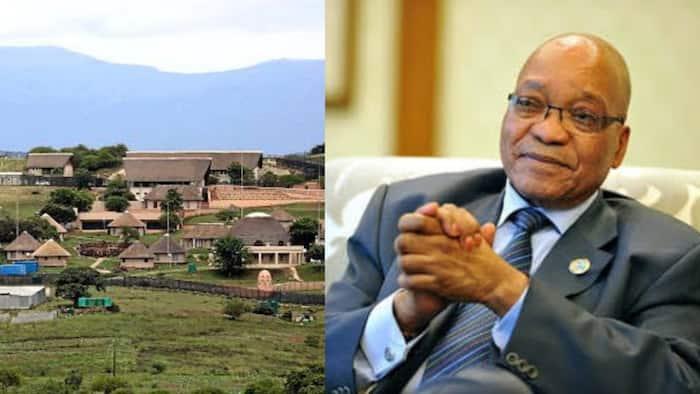 Jacob Zuma discharged from hospital, returns home to Nkandla, Mzansi reacts