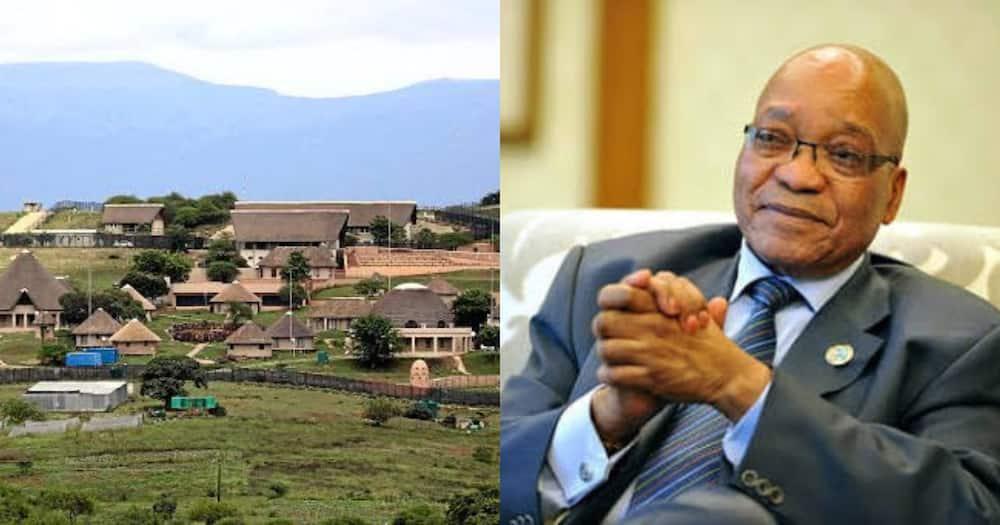Jacob Zuma, discharged, hospital, Nkandla, Mzansi reacts