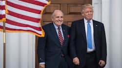 Michael Cohen thinks Rudy Giuliani will throw Trump under the bus