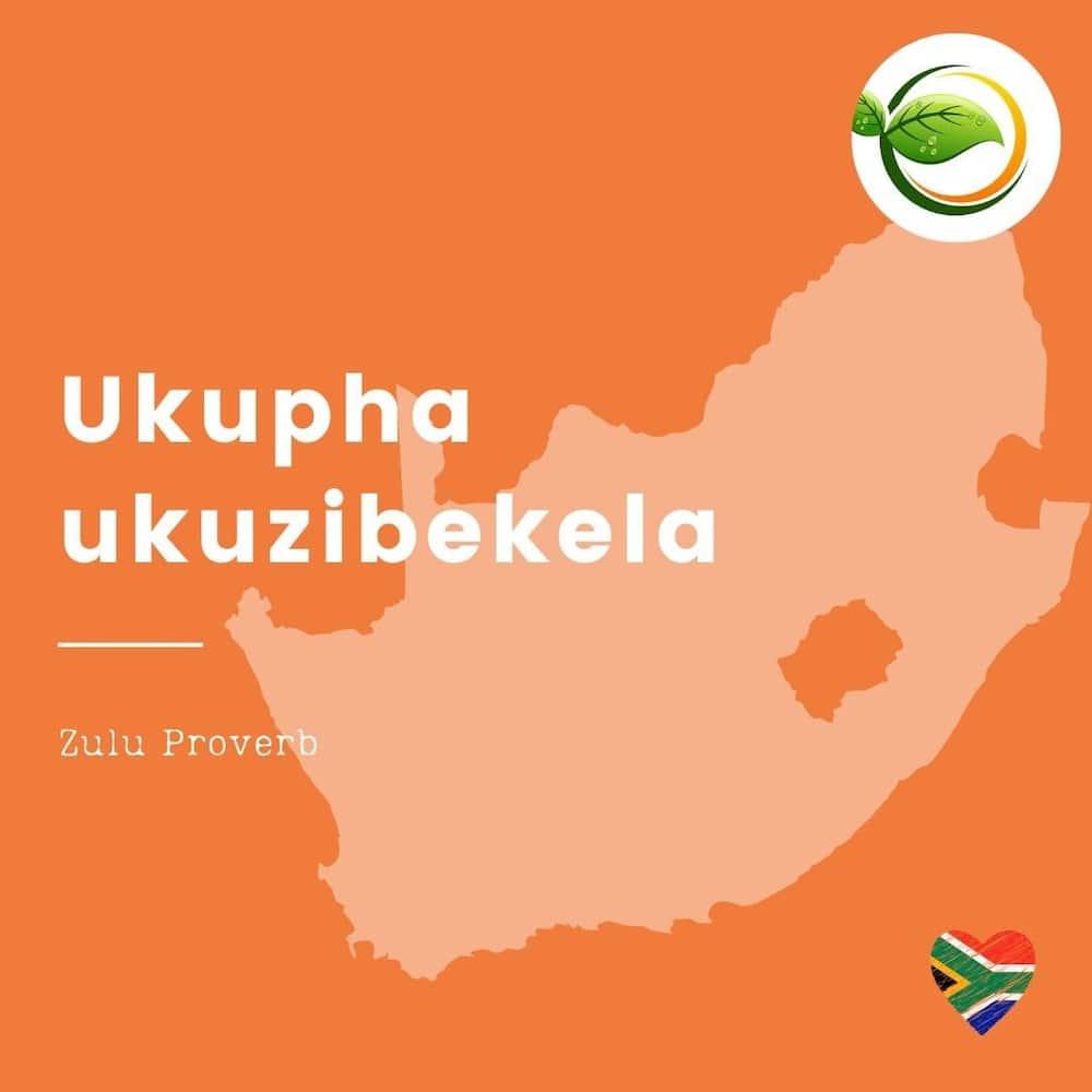 50 proverbs in Zulu