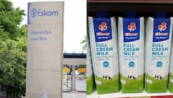 Eskom: R16.9 million spent on milk, most costly consumable of 2019/20