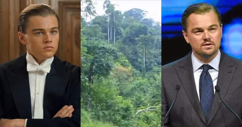Leonardo DiCaprio: World-renowned actor calls on Ghana to save earth by keeping Atewa forest safe