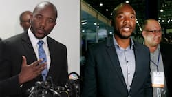 """Mmusi Maimane calls for Cabinet reshuffle: """"4 ministers need to rest"""""""