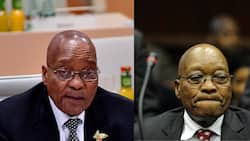 Zuma's defective ConCourt challenge struck off the roll with costs