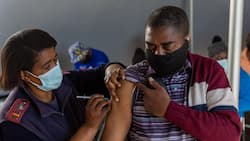 Mzansi divided over vaccine certificate, many feel freedom is being eroded