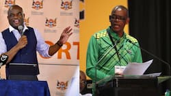 Zamani Saul tears into Magashule and his responsibilities as secretary-general of the ANC