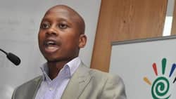 Andile Lungisa: D-day for councillor as 2-year prison sentence starts