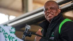 """ActionSA to take legal action against IEC for final draft ballot: """"Mashaba, relax baba"""""""