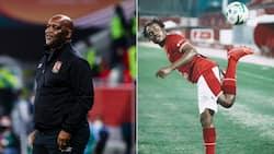 Brighton & Hove did not respect Percy Tau, according to coach Pitso Mosimane
