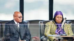 Zuma wives: The photos of all Jacob Zuma's wives and each one's story