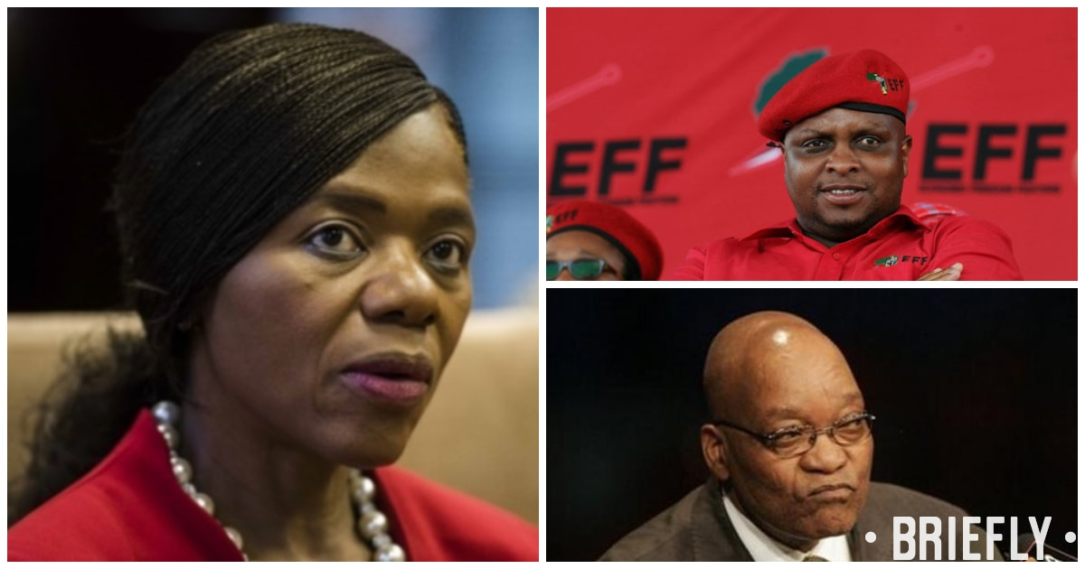 Thuli Madonsela compares EFF behaviour over VBS is reminiscent of Zuma's ANC