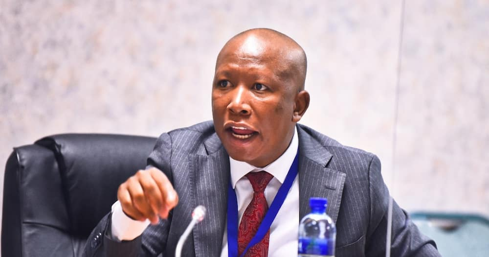 Malema blames the government for young people turning to drugs