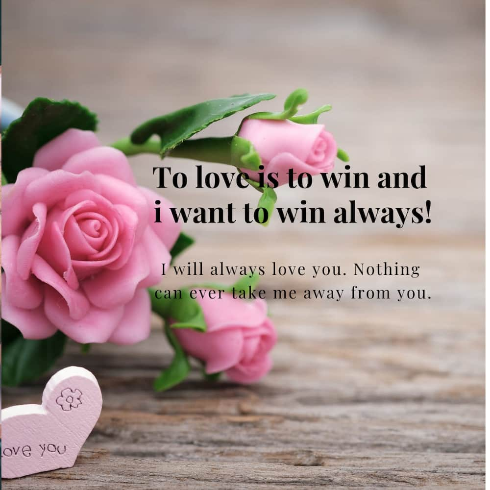 Best romantic love messages for her(with pictures)