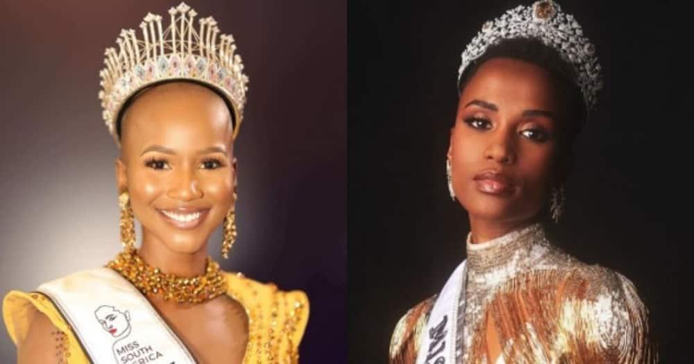 Miss SA, Shudufhadzo Musida, fan girl moment, Zozi Tunzi