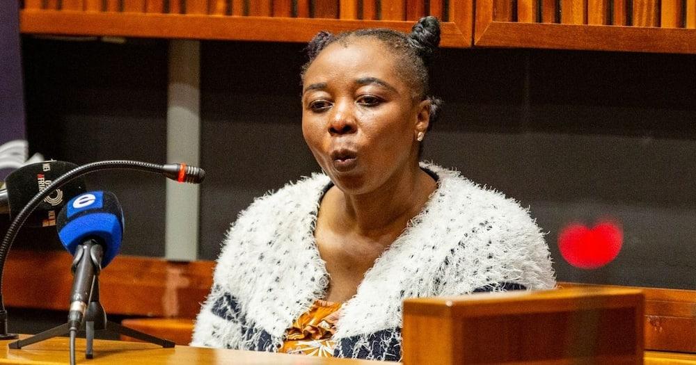 Rosemary Nomia Ndlovu, leg chains, Zanele Motha, death
