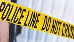 Shooting spree in Kagiso leaves 6 dead and 3 wounded, wedding celebration nearby