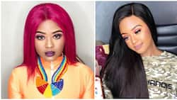 Babes Wodumo fights to save career and prove haters wrong