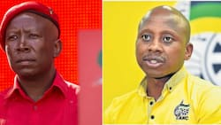Julius Malema feels for disgraced Andile Lungisa after berating at PE taxi ranks