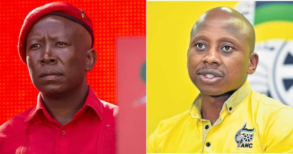 Julius Malema, Andile Lungisa, Gqeberha, PE, Taxi ranks, Nelson Mandela Bay, Eastern Cape, Suspension, Economic Freedom Fighters, EFF, ANC