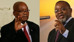 """Mantashe commends Zuma's 1st term in office, says it was """"active"""""""