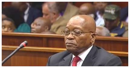 Jacob Zuma's role in the destruction of SARS allegedly exposed