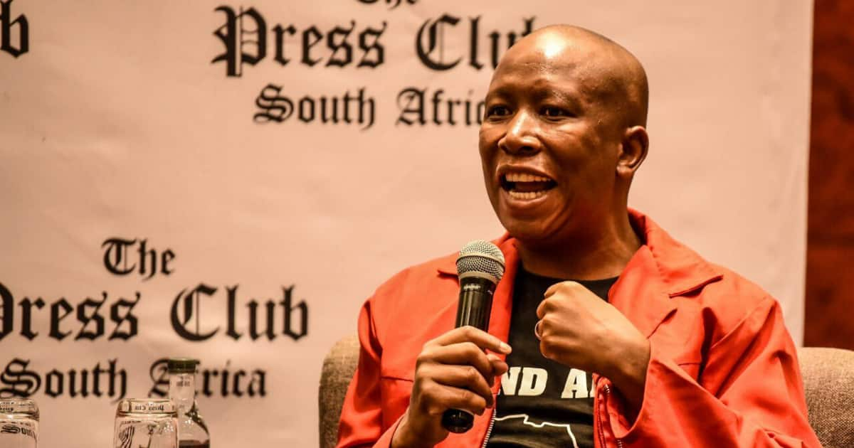 Julius Malema wants Ramaphosa to close schools: 'Think of our kids'