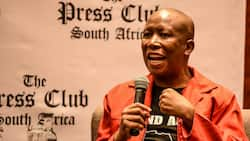 Malema after SONA chaos: Taking Zuma to jail would be a waste