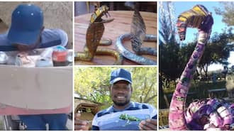 Talented disabled man makes ostrich, snakes and frog artworks from beer can wastes, he has sold one for r11lk