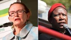 Helen Zille calls out EFF's Julius Malema for hosting super spreader event
