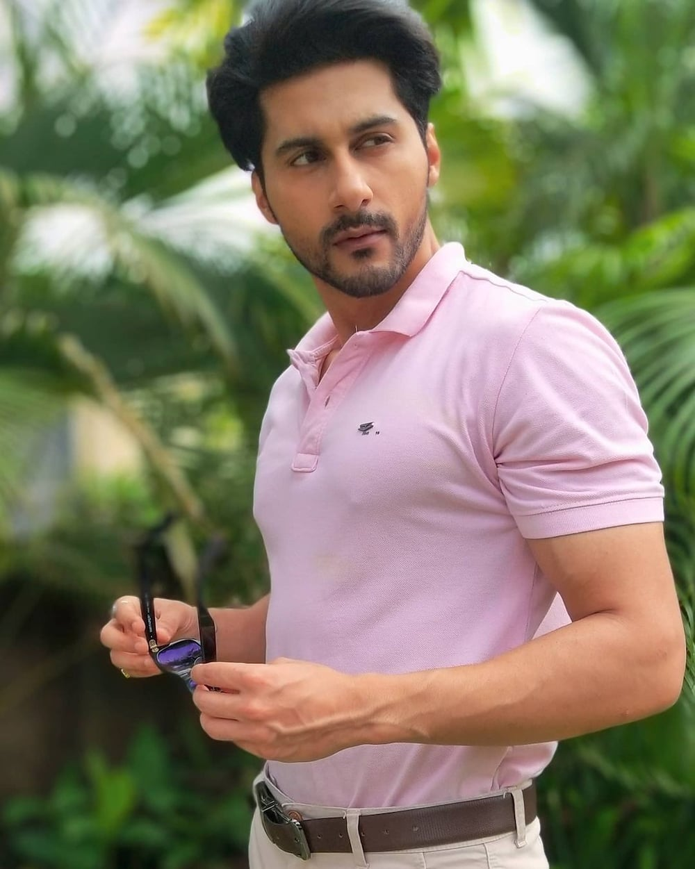 Zee World Perfect Husband