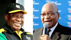 Ramaphosa reacts to Zuma's message calling on people to vote for the ANC