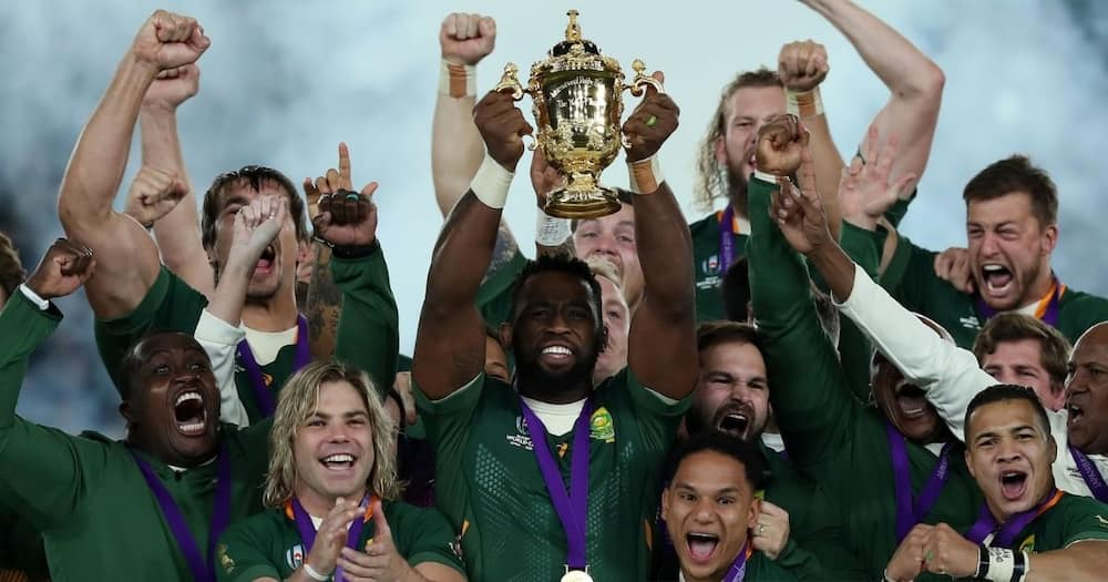 Spingboks drop out of the 2020 Rugby Championship