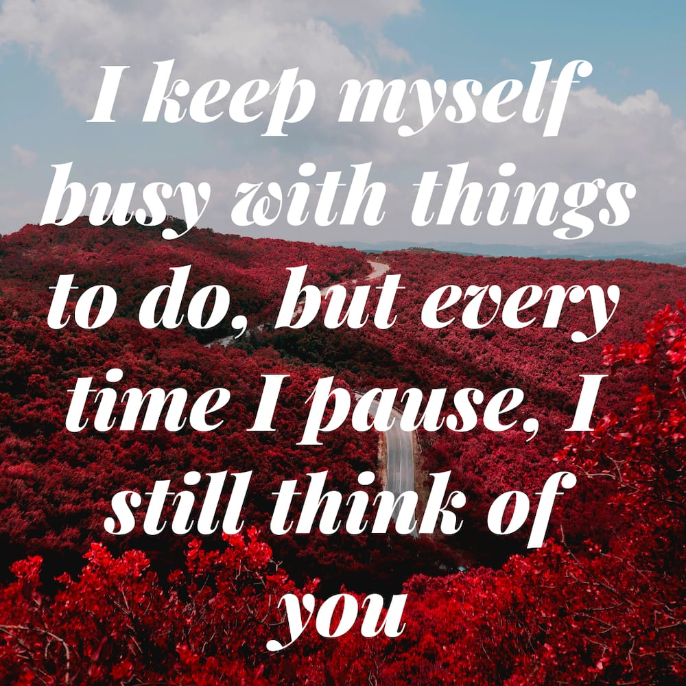 40 Cute Thinking Of You Quotes With Images