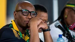 Zizi Kodwa received a R1m loan from EOH exec, can't explain the car he bought