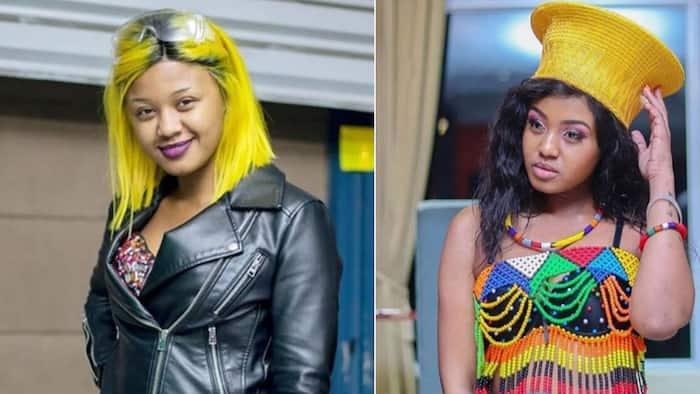 Hawu: Babes Wodumo drags single mothers in strange video