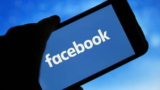Facebook names top-earning brands on the platform, South African news website on the list