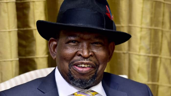Finance Minister Enoch Godongwana says SA seeing only 'isolated' criminal incidents