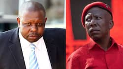 Julius Malema advocates for controversial Judge John Hlophe as the country's next Chief Justice