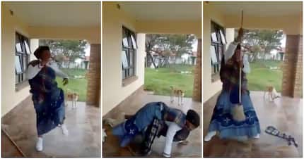 Video of a happy Xhosa makoti busting energetic moves tickles Twitter