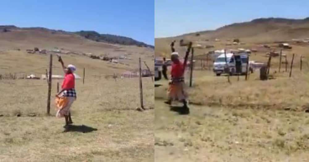 WA: Video of gogo discharging a firearm leaves SA stunned