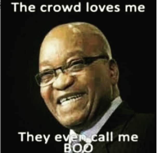 All the funny Zuma memes ever made with pictures