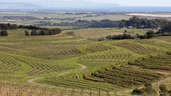 Land expropriation without compensation back in the spotlight