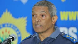 Top cop fired and DA welcomes dismissal, calls for SAPS stability