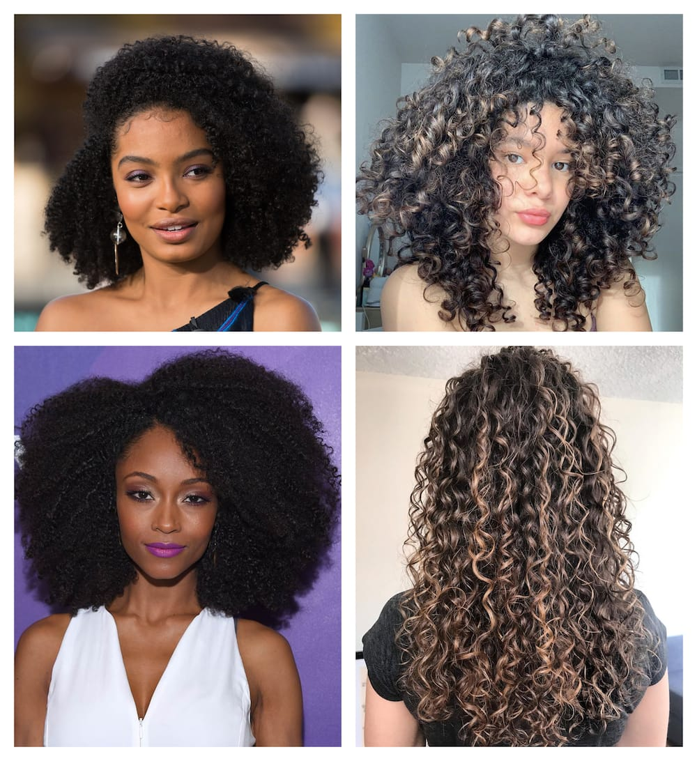 What Are The Differences Between 3a Hair 3b Hair 3c Hair 4a Hair 4b Hair And 4c Hair